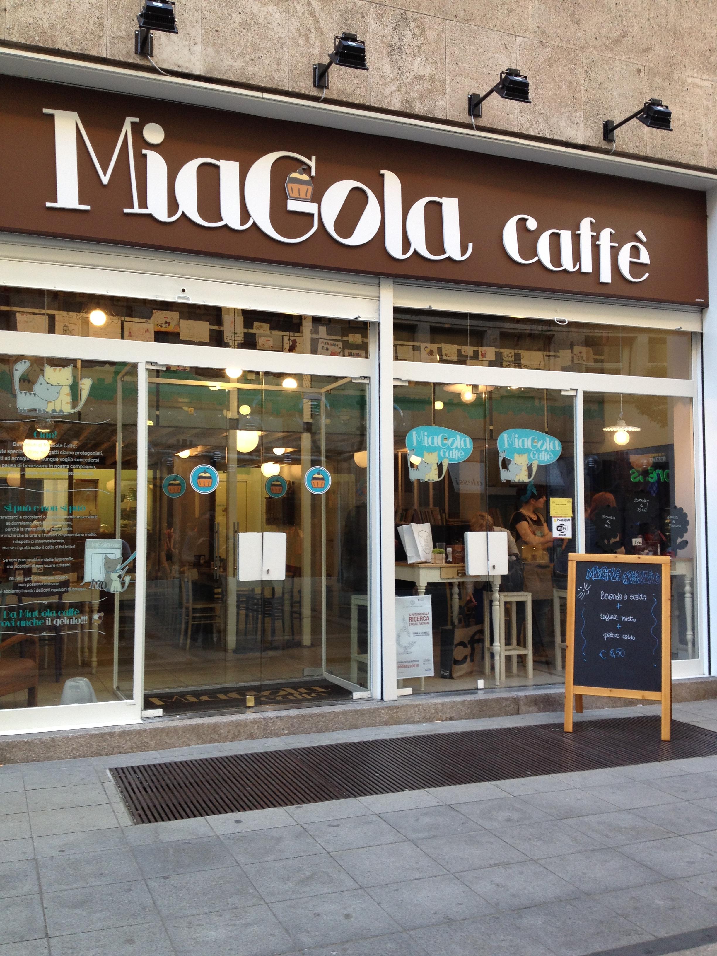 Miagola, il cat cafè di Torino