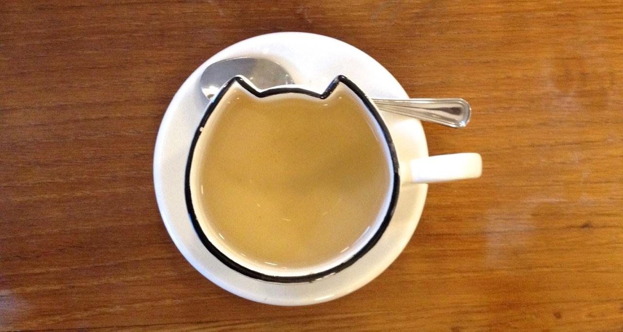 Bere un tè al Cat Café di Milano