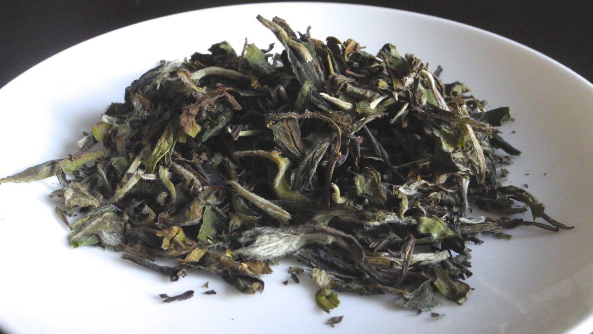 Scopriamo le proprietà e come si prepara il tè bianco