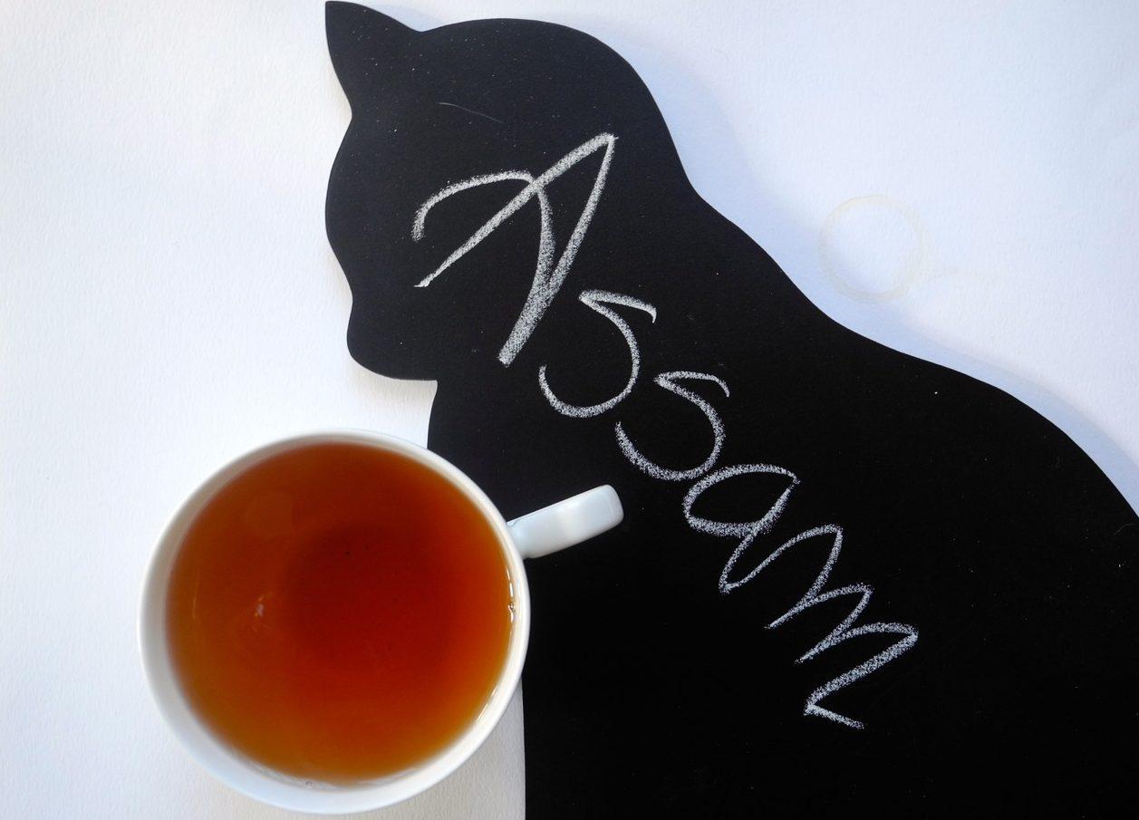 Proprietà e informazioni sull'Assam, tè nero dall'India