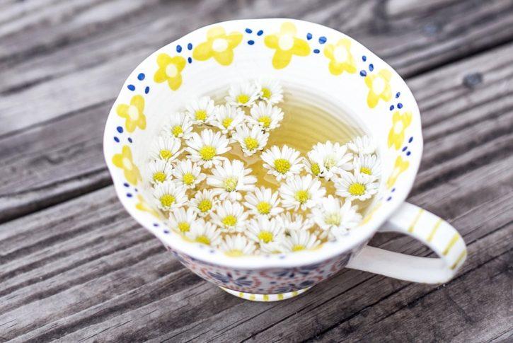 Il calendario di eventi, degustazioni e corsi sul tè di marzo 2017