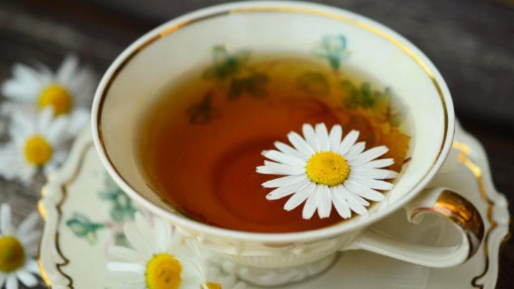 Scopri tutti gli eventi sul tè di aprile 2019