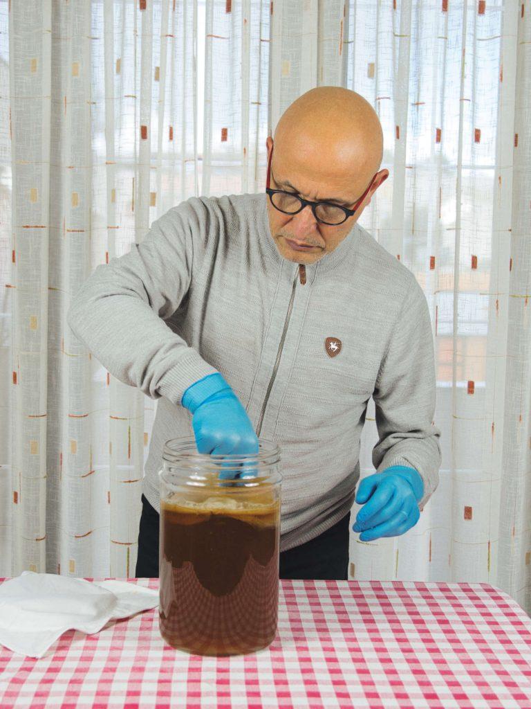 Per preparare il kombucha serve lo scoby, il tè e lo zucchero