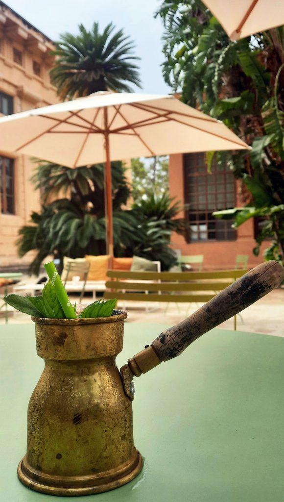 In Sicilia, all'Orto Botanico di Palermo è possibile bere un tè o un cocktail al tè