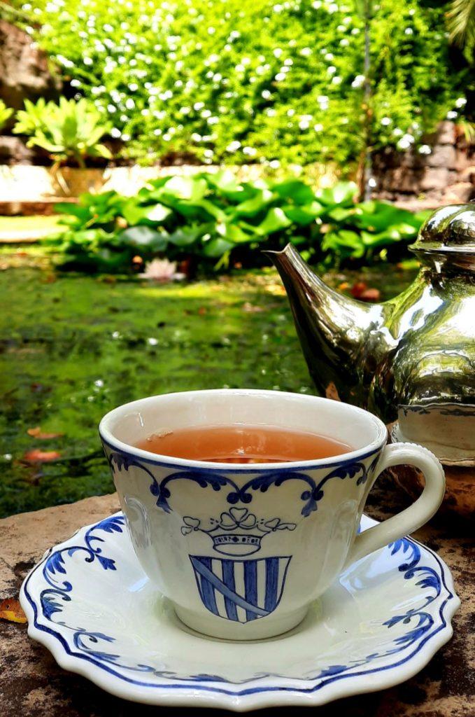 In Sicilia, a Catania si può bere un tè al Parco Paternò del Toscano