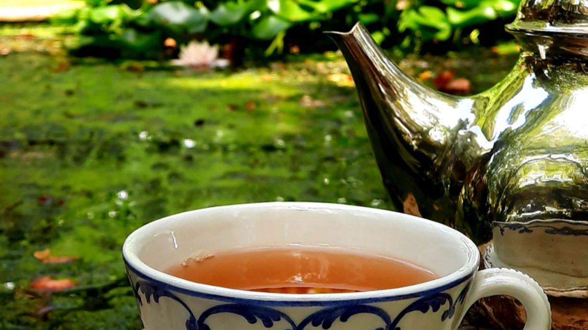 Dove bere un tè in Sicilia se amate la natura e il verde